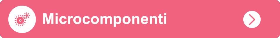 microcomponenti